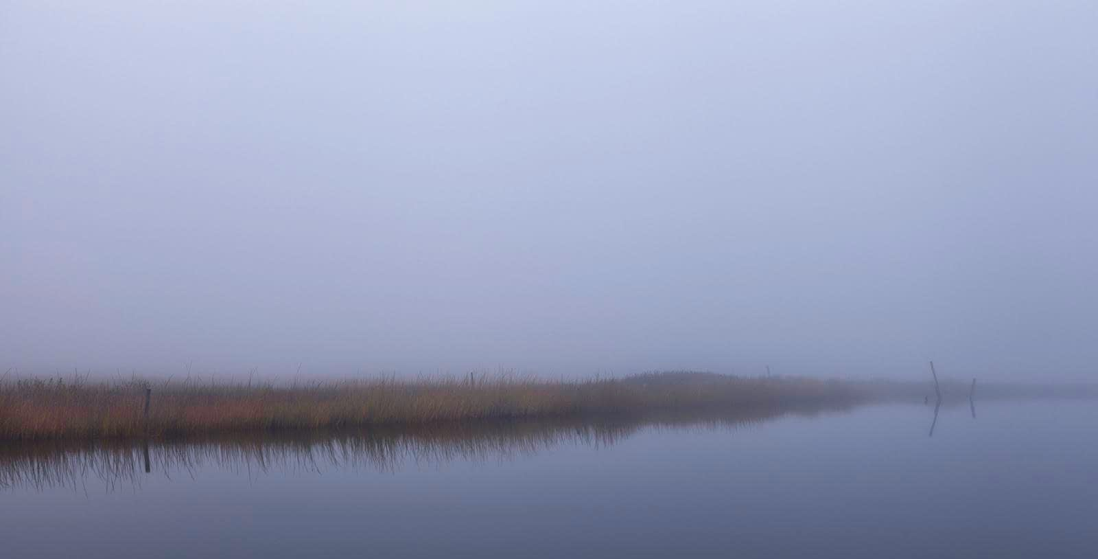 Oyster Creek Fog - Mood in Landscape Photography